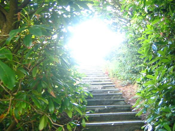 steps-1547099